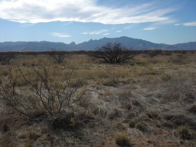 Lot <b>Size:</b> 122 x 304 &nbsp;Land style home in Pearce