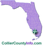 Collier County Homes