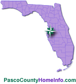 Pasco County Homes