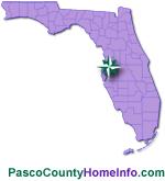 Pasco County Homes