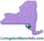 Livingston Manor Homes