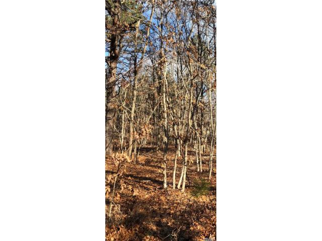 Lot <b>Size:</b> 262  Land style home in Manorville