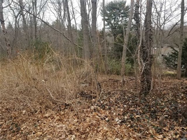 Lot <b>Size:</b> .5  Land style home in Greenlawn