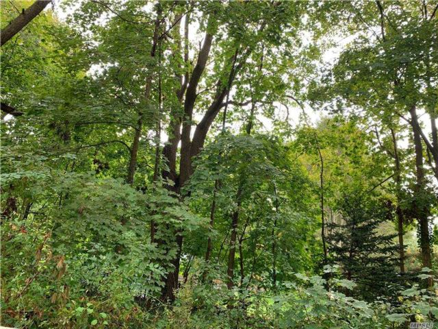 Lot <b>Size:</b> 1 ACRE  Land style home in Woodbury
