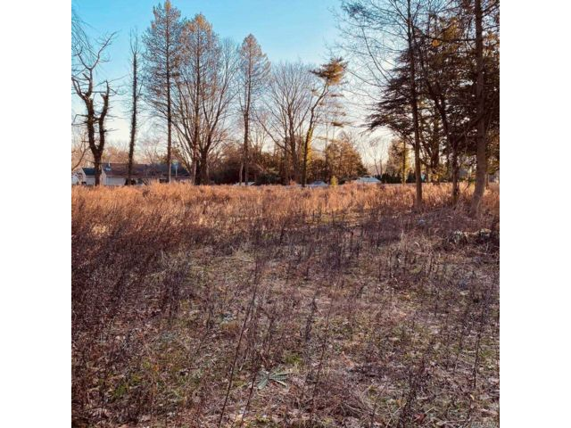 Lot <b>Size:</b> 0.81  Land style home in Smithtown