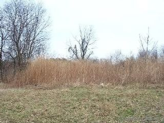 Lot <b>Size:</b> 3.16 Land style home in Brookville