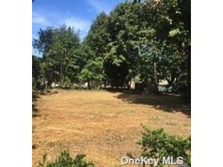 Lot <b>Size:</b> 63x95 Land style home in Hicksville