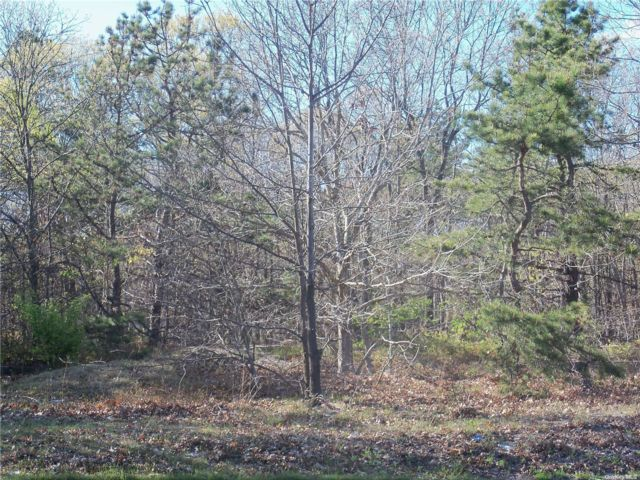 Lot <b>Size:</b> .66 Land style home in Centereach