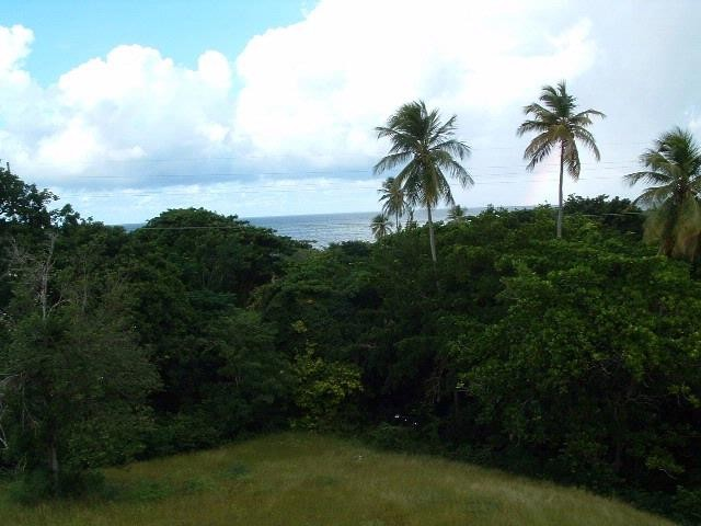 Lot <b>Size:</b> 5028.3606 sq mts  Land style home in Vieques