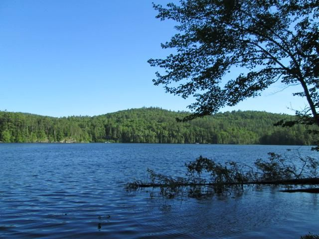Lot <b>Size:</b>  Land style home in Schroon Lake