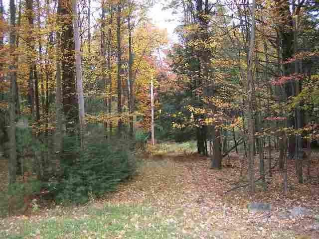 Lot <b>Size:</b>  Land style home in Forestburgh