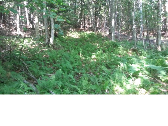 Lot <b>Size:</b> 6.5 Land style home in Schroon Lake