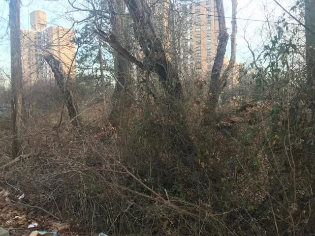 Lot <b>Size:</b> 2883 Land style home in Bronx