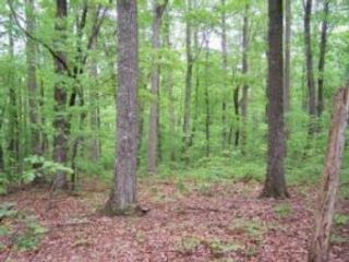 Lot <b>Size:</b> 18.12 ACRES Land (acreage) style home in Pittsville