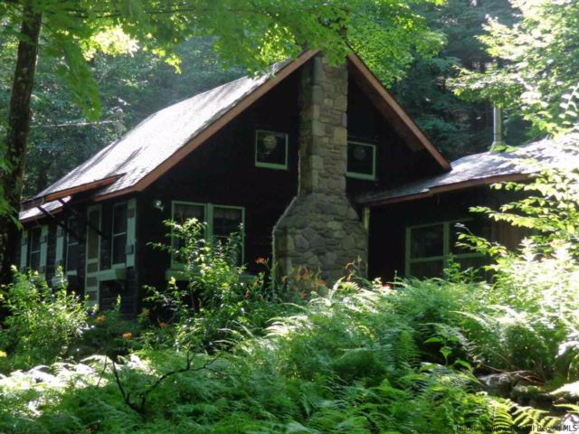 3 BR,  2.00 BTH Log home style home in Big Indian