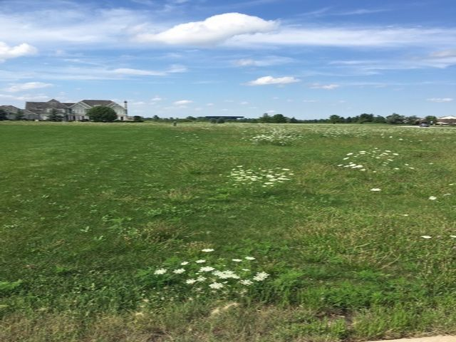 Lot <b>Size:</b> 0.34 Land style home in Tinley Park