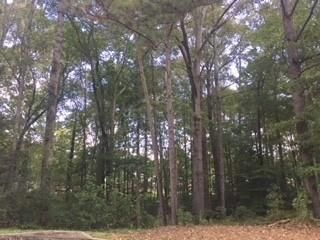 Lot <b>Size:</b> 0.52  Land style home in Woodstock