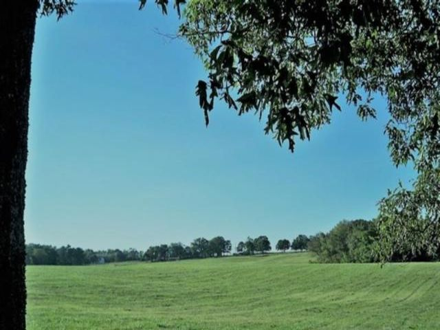 Lot <b>Size:</b> 39.56 Land style home in Dacula