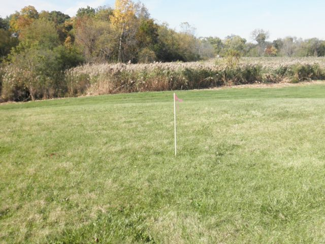 Lot <b>Size:</b> 0.23  Land style home in Wauconda