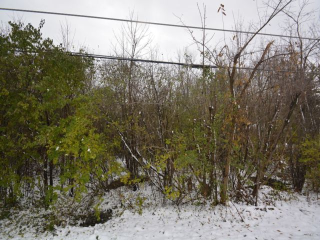 Lot <b>Size:</b> 1.1 Land style home in Wadsworth