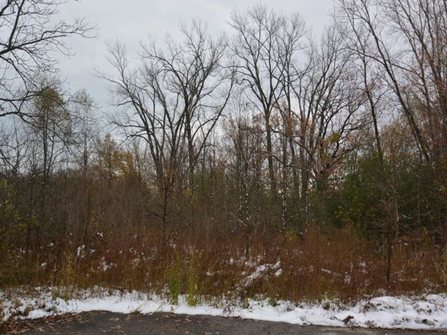 Lot <b>Size:</b> 0.45  Land style home in Gurnee