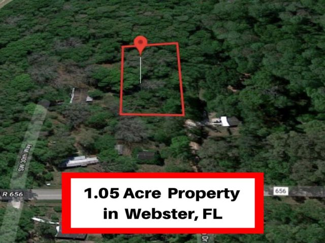 Lot <b>Size:</b> 1.05  Land style home in Webster