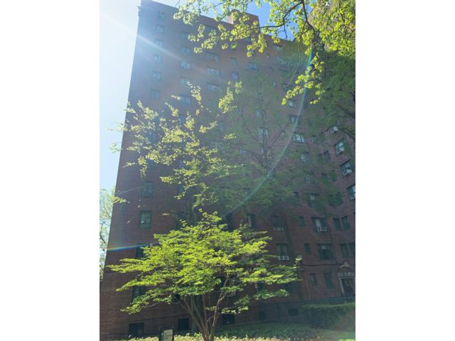 [Bronx Real Estate, listing number 6953936]
