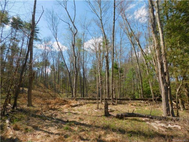 [Deerpark Real Estate, listing number 6954363]