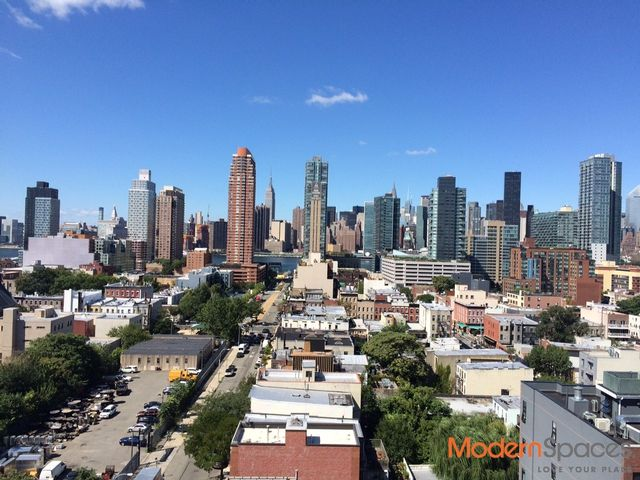 1 BR,  1.00 BTH  Condo style home in Long Island City
