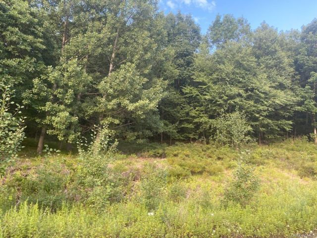 Lot <b>Size:</b>  Land style home in Haverstraw Town