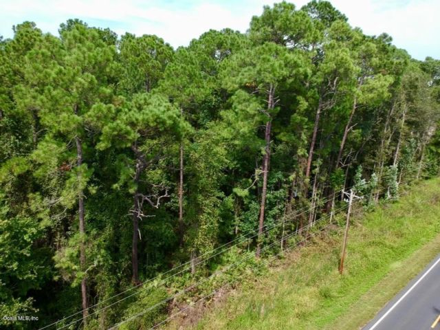 Lot <b>Size:</b> 4350 Land style home in Dunnellon