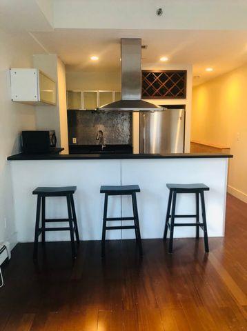 1 BR,  1.00 BTH Condo style home in Long Island City