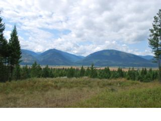 2 BR,  2.00 BTH Log style home in Bonners Ferry