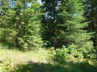 Studio,  0.00 BTH Land style home in Crystal River
