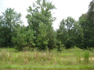 Studio,  0.00 BTH Land style home in Sumter