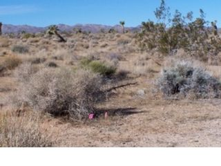 Studio,  0.00 BTH  Land style home in Yucca Valley