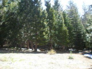 Studio,  0.00 BTH Land style home in Mount Shasta