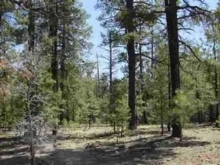 4 BR,  3.00 BTH  Single family style home in Pinetop
