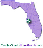 Pinellas County Homes