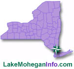 Lake Mohegan Homes